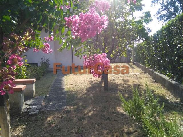 Agriturismo in Vendita a Castelfranco di Sotto