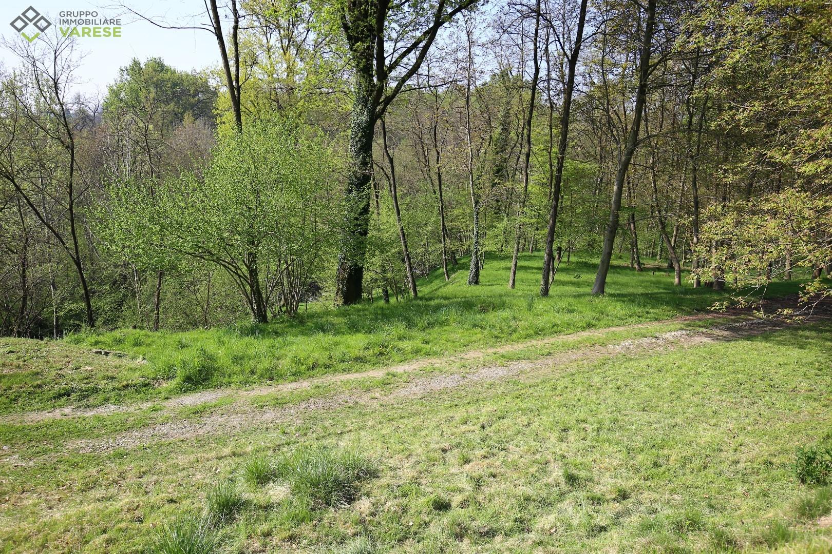Terreno Edificabile Residenziale in vendita a Besozzo, 9999 locali, zona Zona: Bogno, prezzo € 85.000 | CambioCasa.it