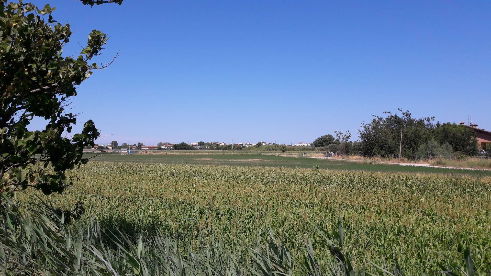 Terreno Agricolo in Vendita a Cesenatico