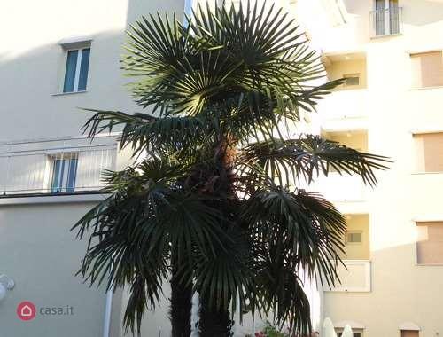 Albergo in affitto a Cesenatico, 9999 locali, zona Zona: Zadina, Trattative riservate | CambioCasa.it