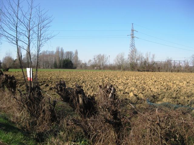 Terreno Edificabile Residenziale in Vendita a San Giorgio di Nogaro