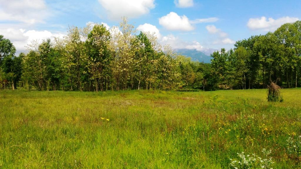 Terreno Edificabile Residenziale in vendita a Majano, 9999 locali, prezzo € 100.000 | CambioCasa.it