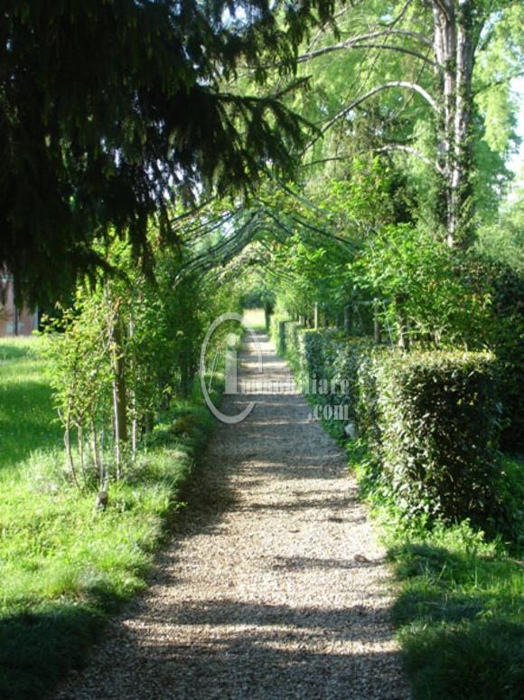 Villa in Vendita a Montebelluna: 5 locali, 1000 mq - Foto 7