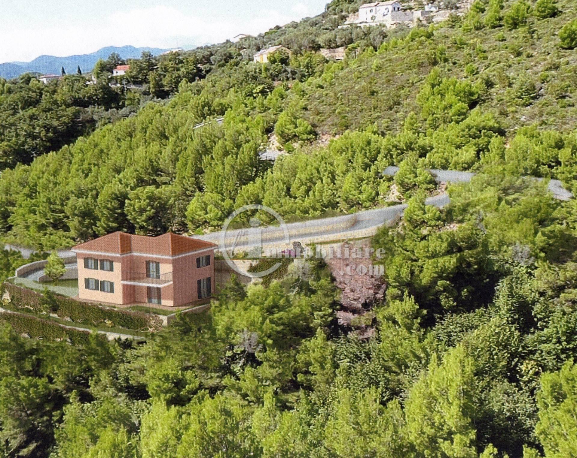 Terreno residenziale in Vendita a Arnasco: 4500 mq