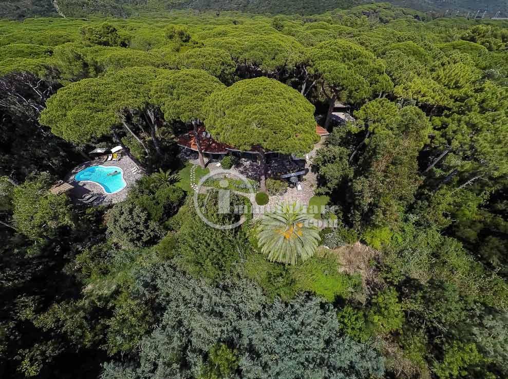 Villa in Vendita a Castiglione Della Pescaia: 5 locali, 500 mq - Foto 4