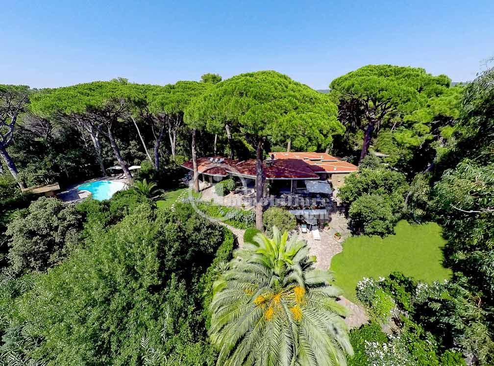 Villa in Vendita a Castiglione Della Pescaia: 5 locali, 500 mq - Foto 6