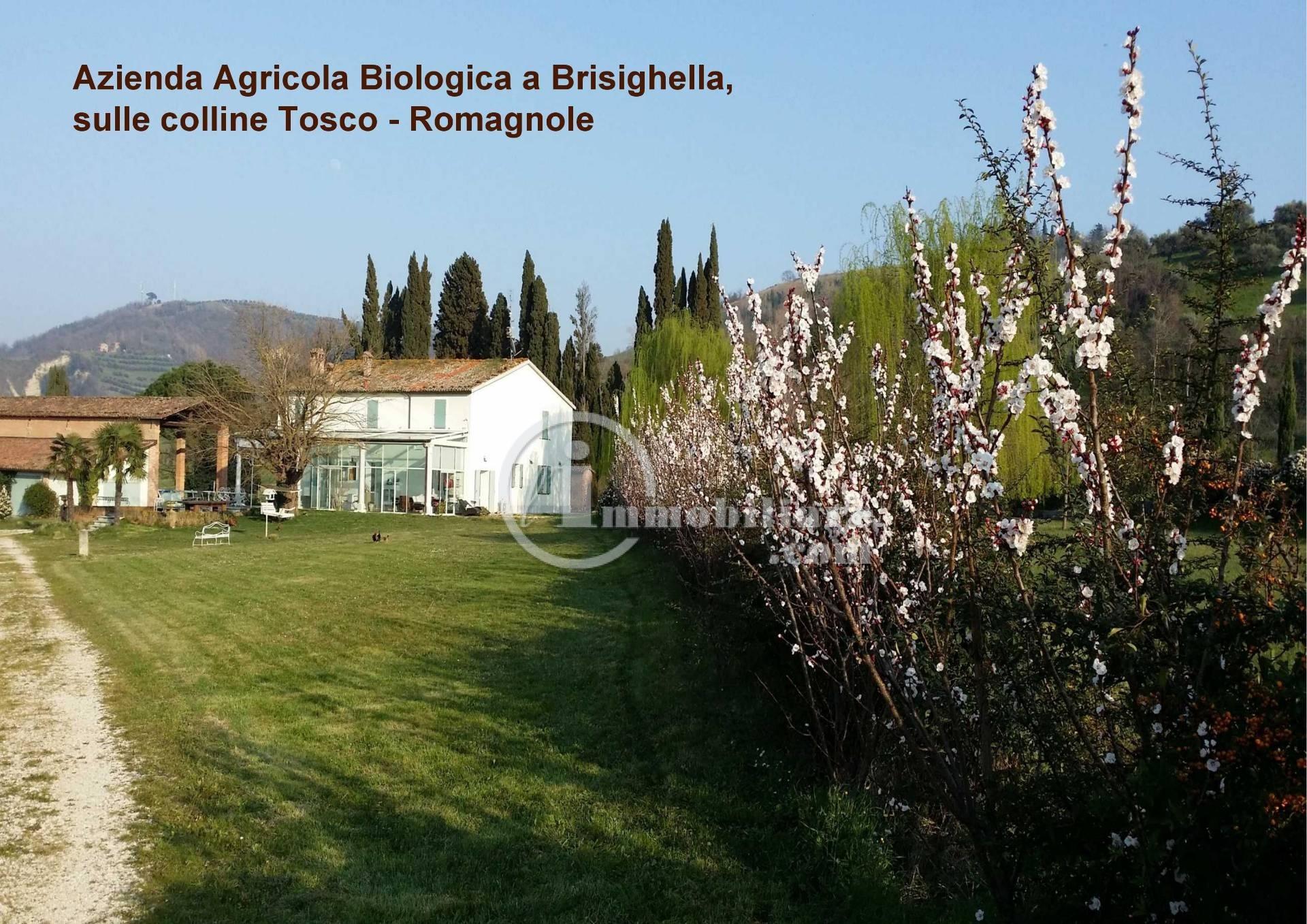 Azienda in Vendita a Brisighella: 5 locali, 1850 mq