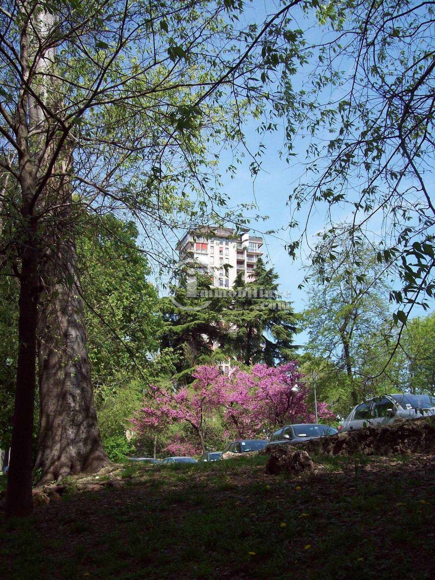 Attico in Vendita a Milano: 5 locali, 190 mq - Foto 4