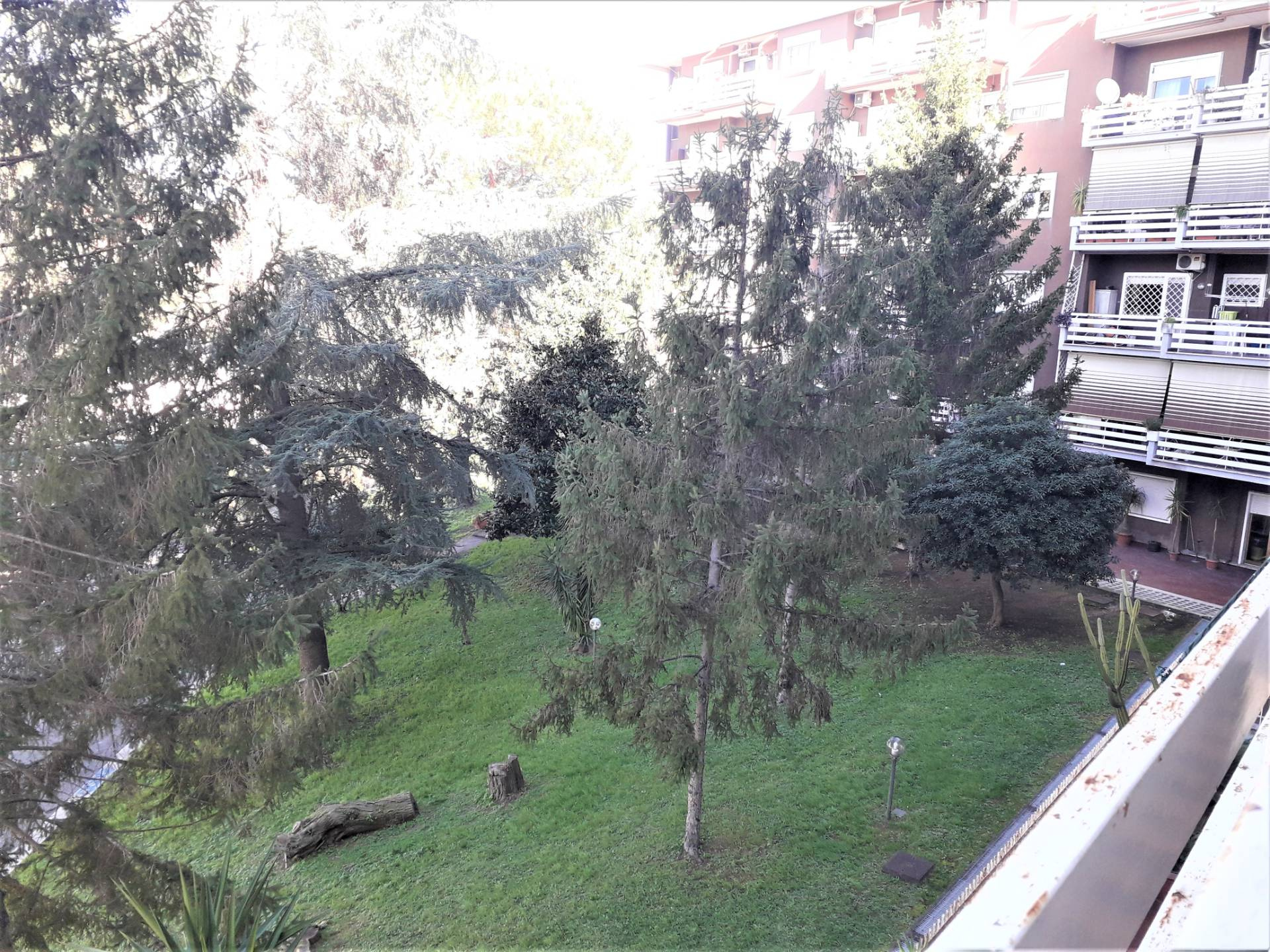 Appartamento in Affitto a Roma 34 Aurelio / Boccea: 2 locali, 65 mq