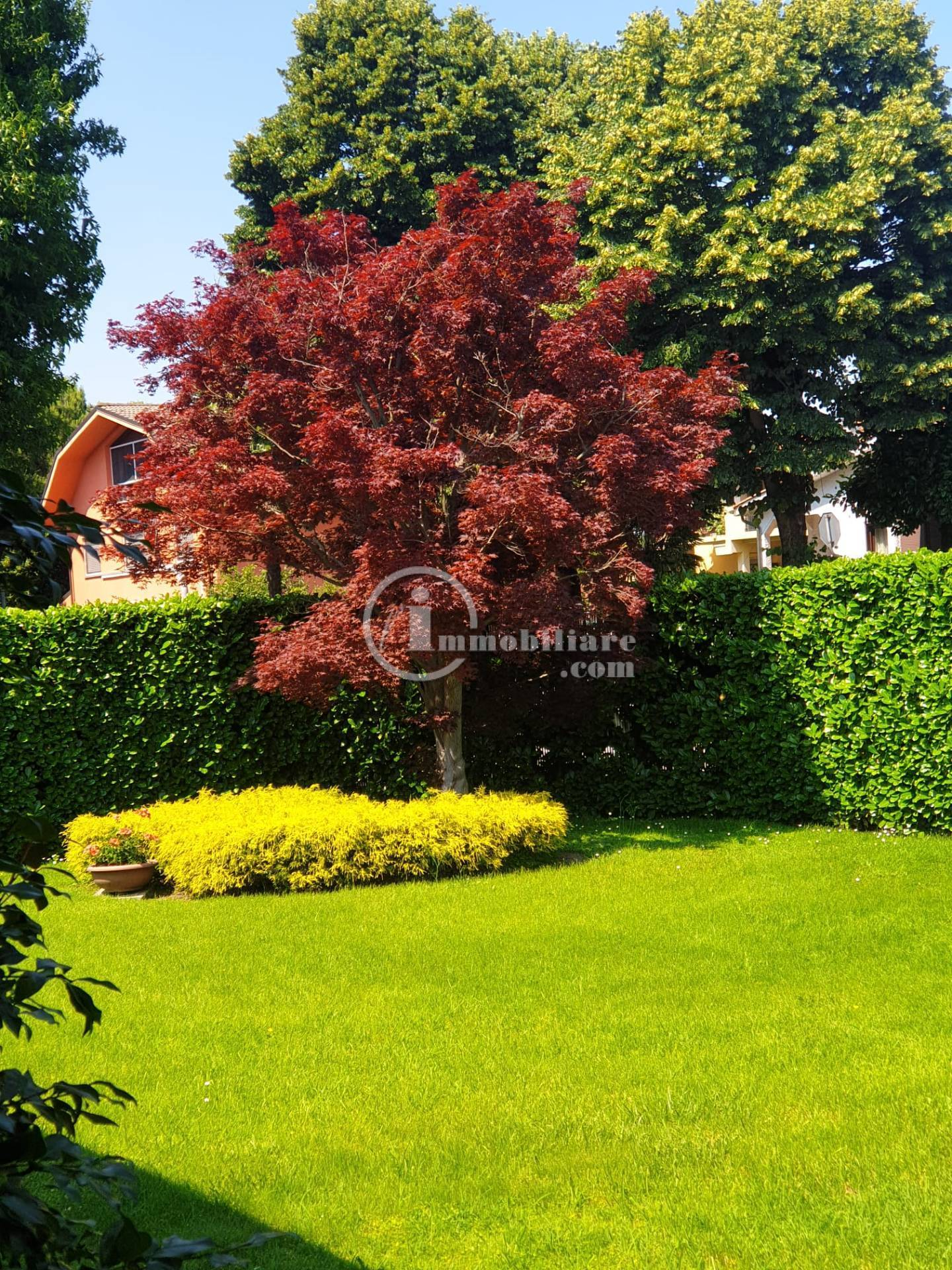 Villa in Vendita a Trezzano Sul Naviglio: 5 locali, 280 mq - Foto 15