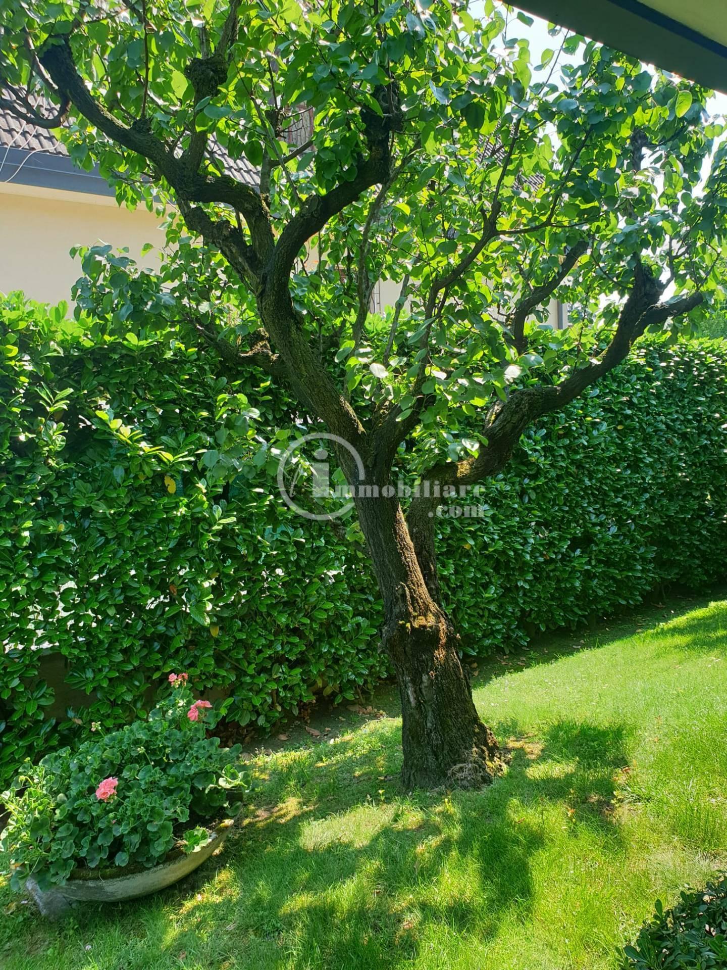 Villa in Vendita a Trezzano Sul Naviglio: 5 locali, 280 mq - Foto 16