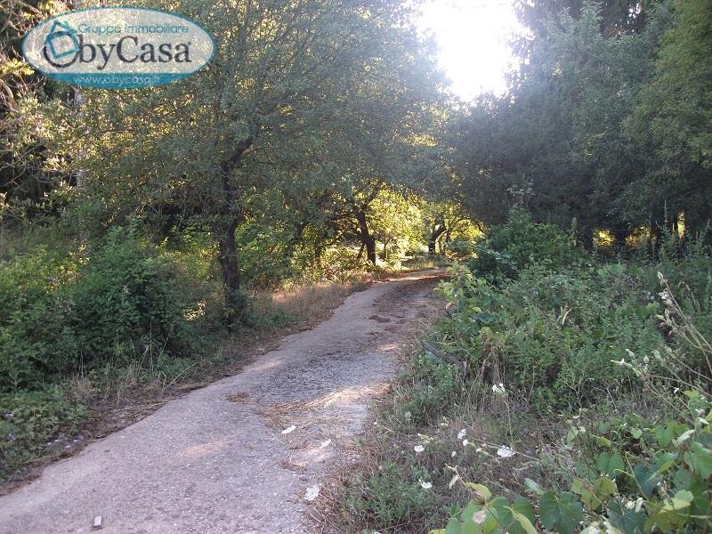 Terreno Agricolo in vendita a Capranica, 9999 locali, prezzo € 79.000 | CambioCasa.it
