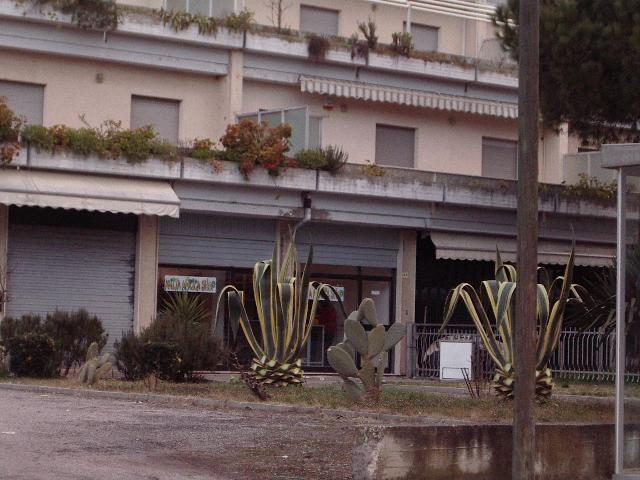 Negozio / Locale in vendita a Martinsicuro, 9999 locali, zona Località: VillaRosa, prezzo € 100.000 | CambioCasa.it