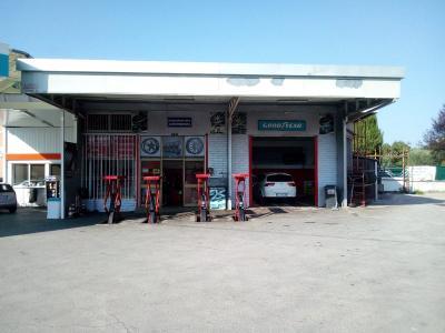 Attività commerciale in Affitto a Alatri
