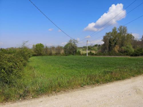 Terreno Agricolo in Vendita a San Giovanni Incarico