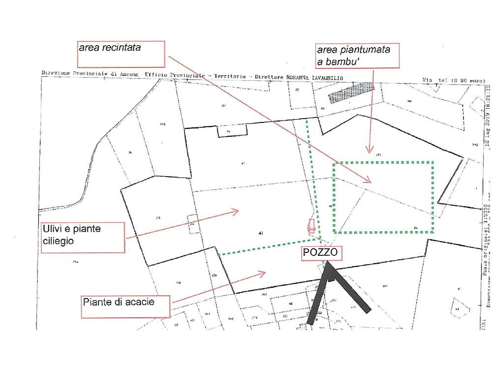 TERRENO AGRICOLO in Vendita a Maiolati Spontini (ANCONA)