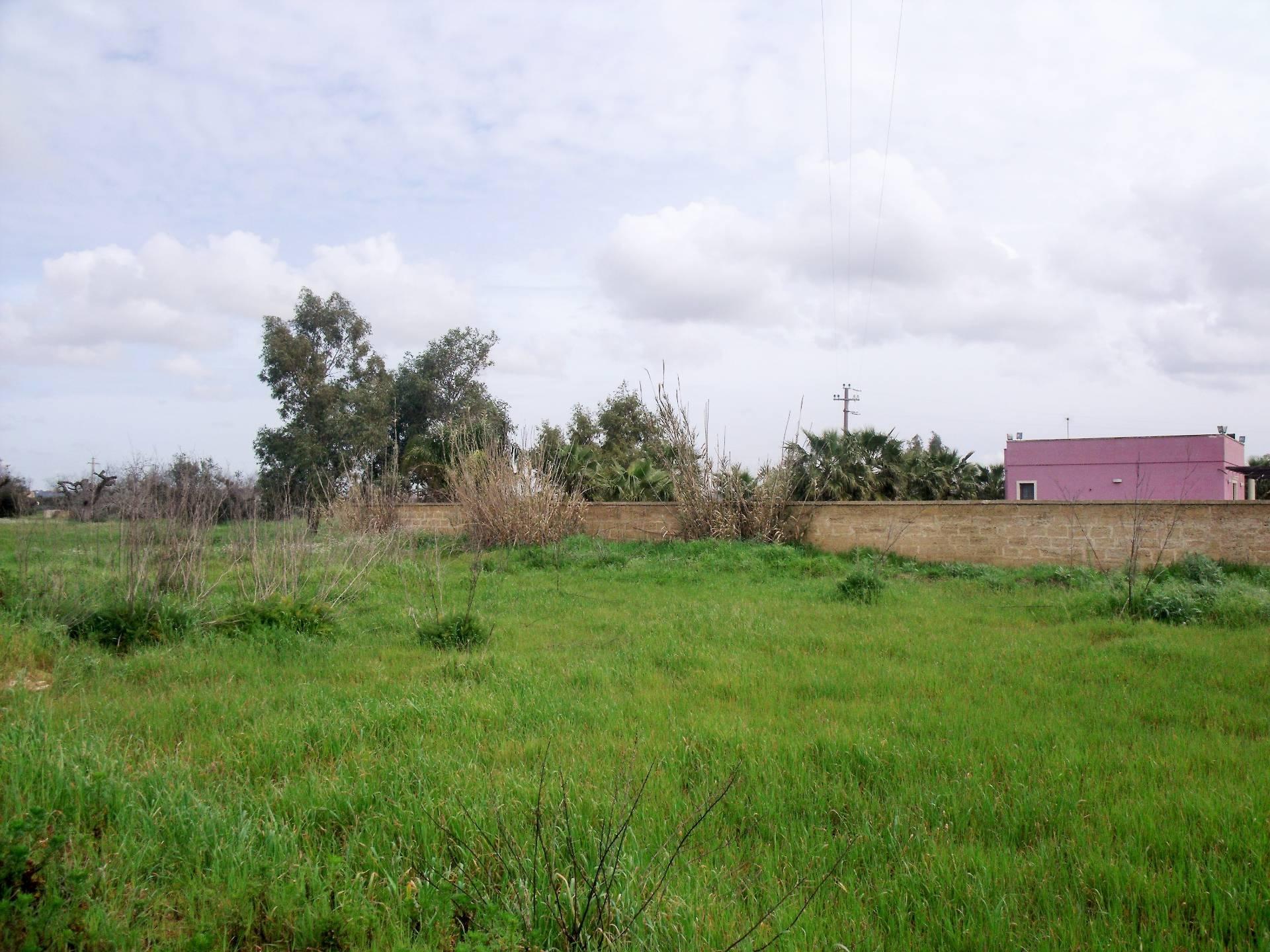 Terreno Agricolo in vendita a Alezio, 9999 locali, prezzo € 7.000 | CambioCasa.it