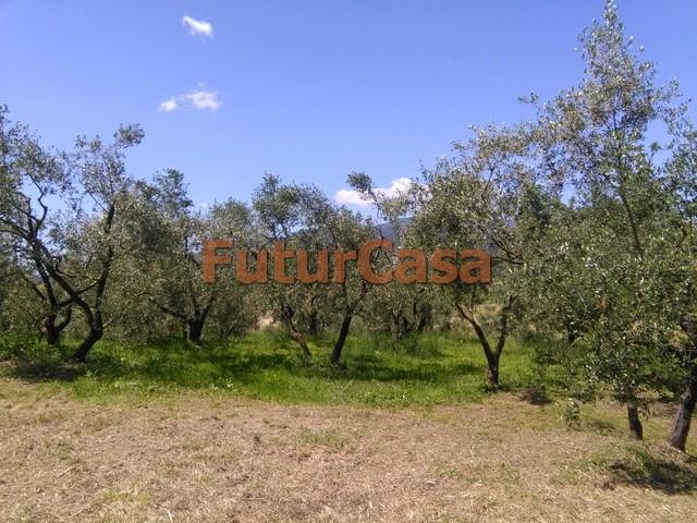 Agriturismo in vendita a Castelfranco di Sotto, 9 locali, zona Zona: Orentano, prezzo € 179.000 | Cambio Casa.it