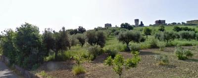 Terreno Agricolo in Vendita a Roseto degli Abruzzi