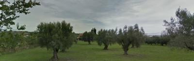 Terreno industriale in Vendita a Castellalto