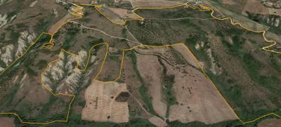 Terreno Agricolo in Vendita a Pineto