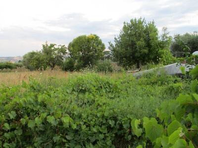 Terreno residenziale in Vendita a Giulianova