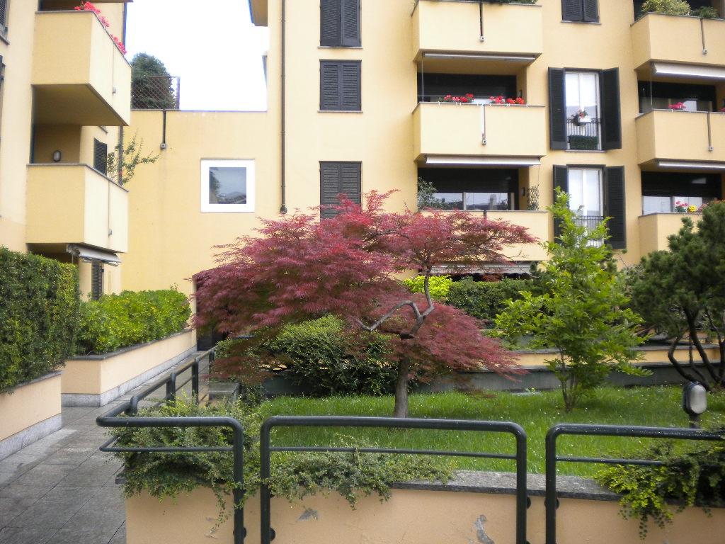 Appartamento in affitto a Legnano, 1 locali, zona ro, prezzo € 450   PortaleAgenzieImmobiliari.it