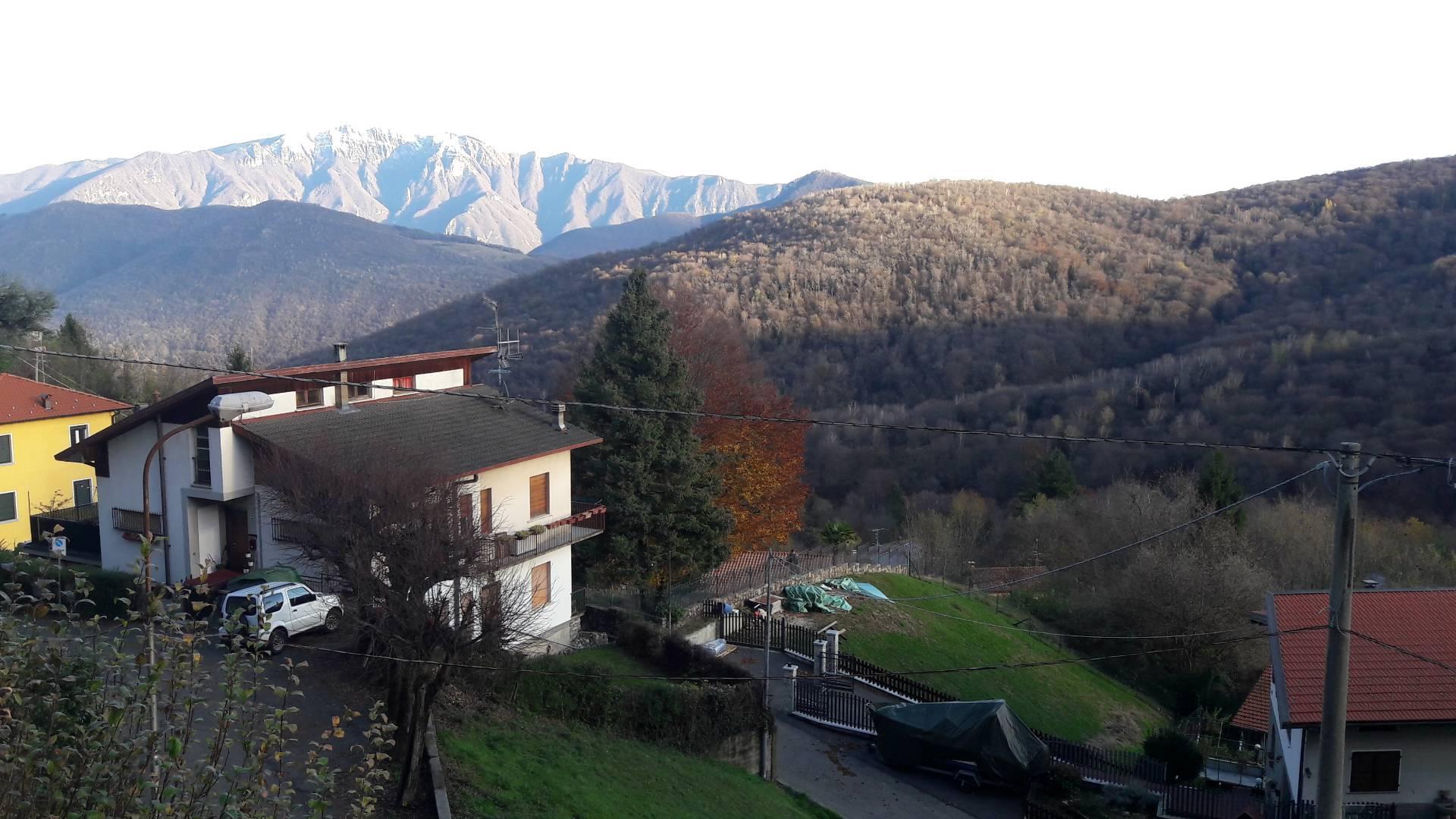 Vendita Villetta Bifamiliare Casa/Villa Marzio 103674