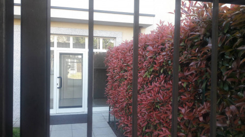 bilocale con giardino privato in Vendita a Cardano al Campo