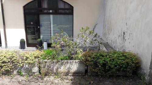 Locale commerciale in Affitto a Cardano al Campo