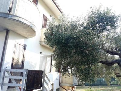 Casa singola in Vendita a Moscufo