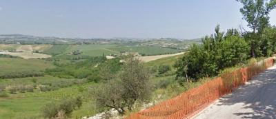 Terreno Agricolo in Vendita a Castel di Lama