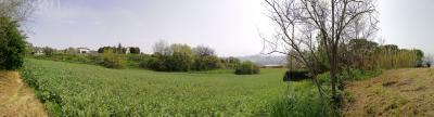 Terreno edificabile in Vendita a Monsampolo del Tronto