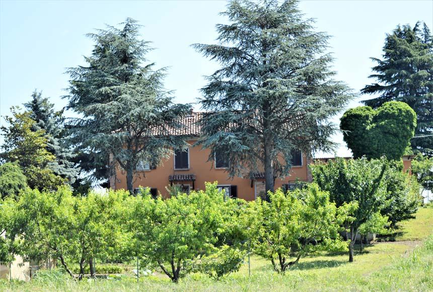Villa / Villetta in Vendita a Calamandrana