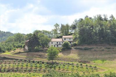 Casa Rustica in Vendita a Cravanzana