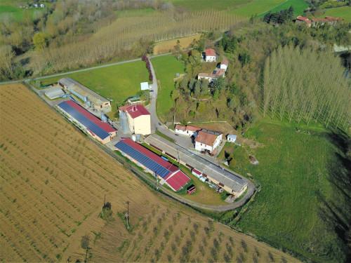 Capannone in Vendita a Spigno Monferrato