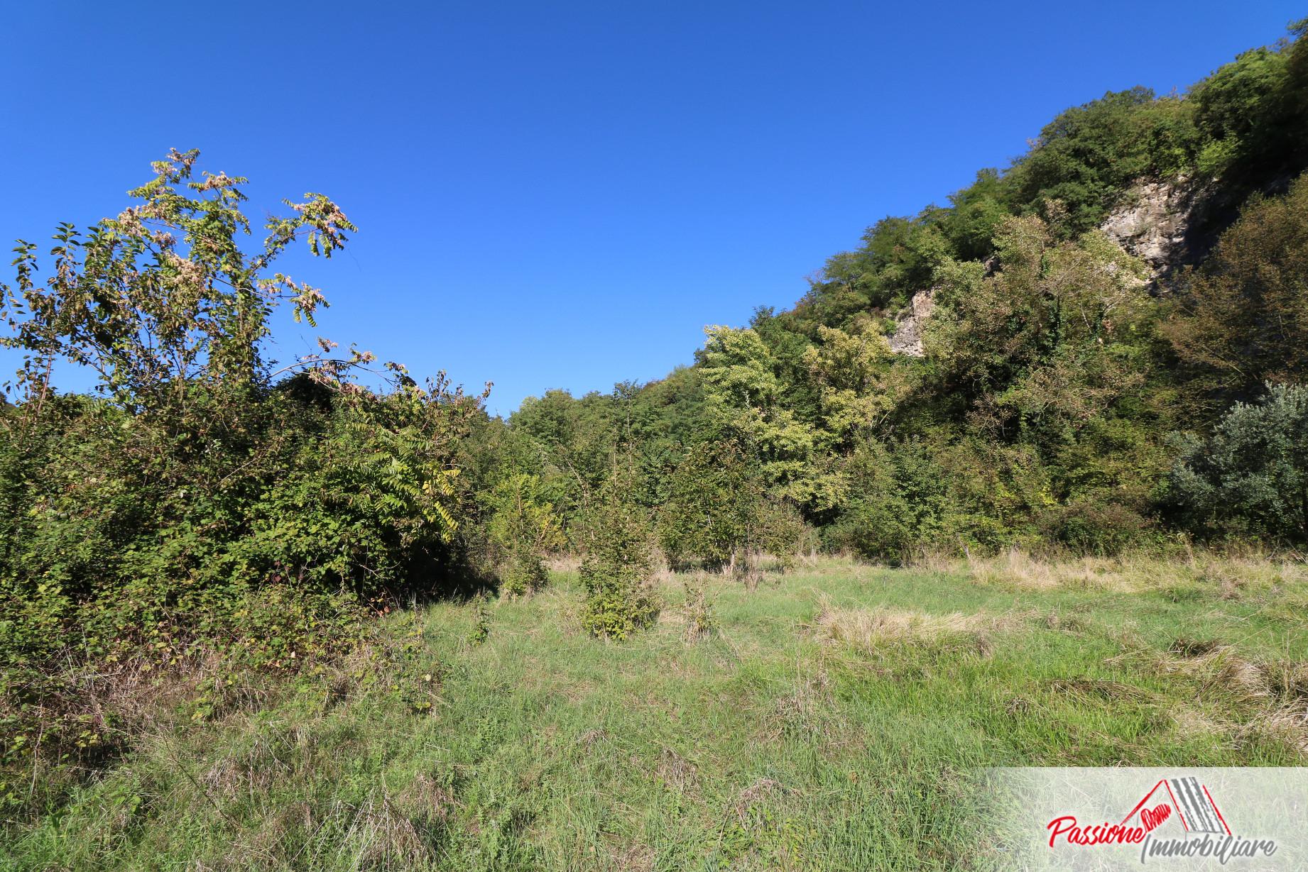 Terreno agricolo in vendita a Avesa – Passione Immobiliare Verona