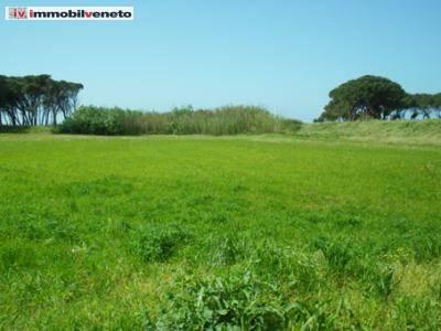 Terreno Edificabile Residenziale in vendita a Orgiano, 9999 locali, zona Zona: Pilastro, Trattative riservate   CambioCasa.it