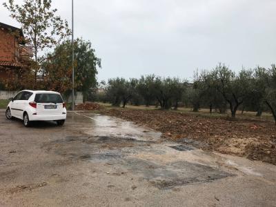 Terreno Agricolo in Vendita a Vasto