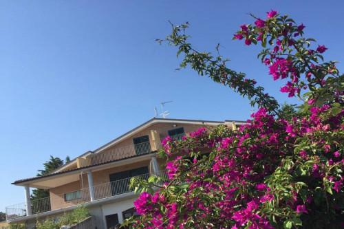 Villa in Vendita a Termoli