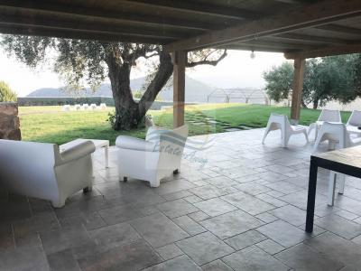 Villa à Vendre à Vallebona