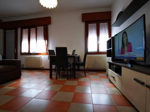 Appartamento 2 camere in Affitto a Preganziol