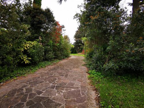 Villa in Affitto a Mogliano Veneto