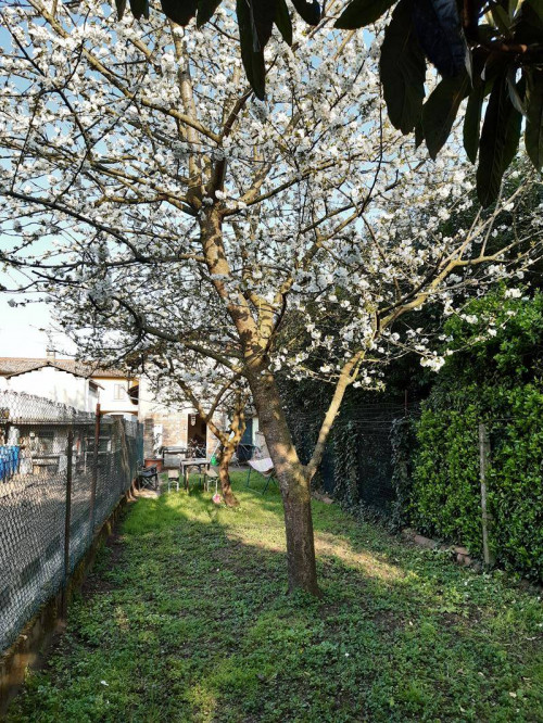 Casa singola in Vendita a Turano Lodigiano