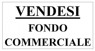 Attività commerciale in Vendita a Camaiore