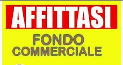 Locale commerciale in Affitto a Camaiore