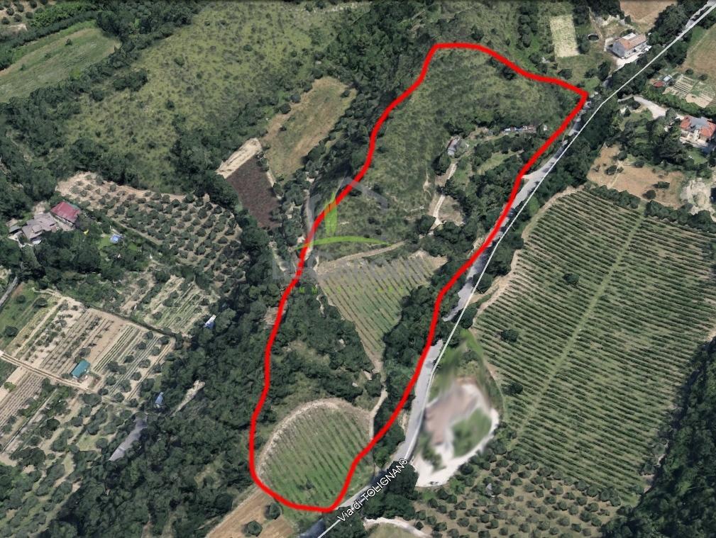 ascoli-piceno vendita quart: valle senzana de-carolis-immobiliare