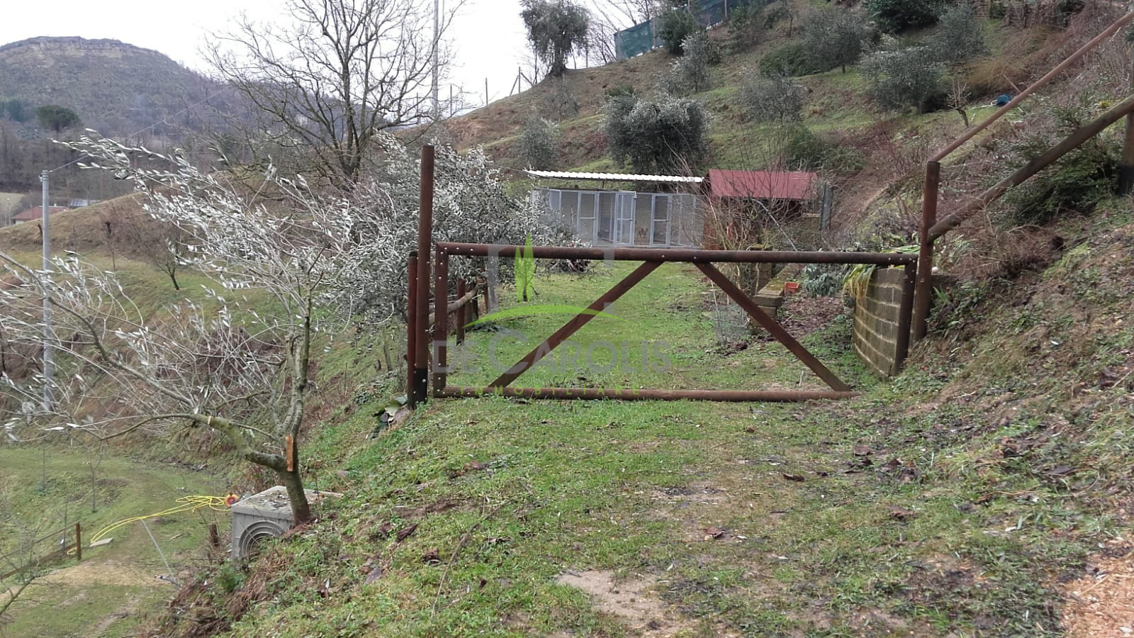 Terreno Agricolo in vendita a Venarotta, 9999 locali, zona Zona: Olibra, Trattative riservate   CambioCasa.it
