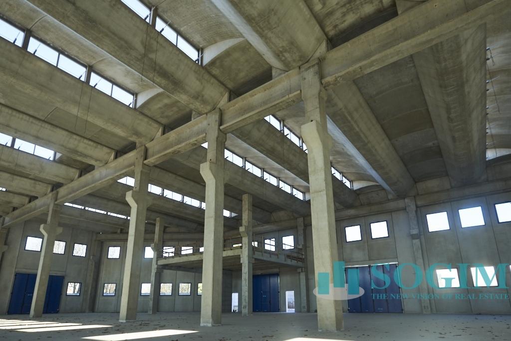 Capannone in Affitto a Cinisello Balsamo  rif. 9351