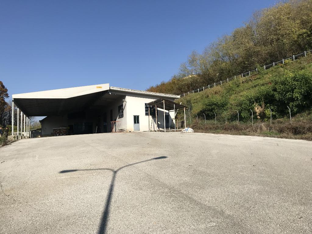 Capannone in affitto a Senna Comasco, 9999 locali, prezzo € 4.137   PortaleAgenzieImmobiliari.it